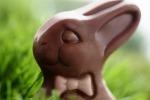 Немецкими кондитерами изготовлено 206 миллионов пасхальных шоколадных зайцев